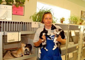 Shelter worker Tina Maxwell tries to contain an armful of sweet, friendly kittens available for adoption at the Madera County animal shelter. Sadly, there are too many kittens being born and not enough local homes to adopt them. Only 15 cats and kittens out of around 500, were adopted from the shelter for the entire month of June.